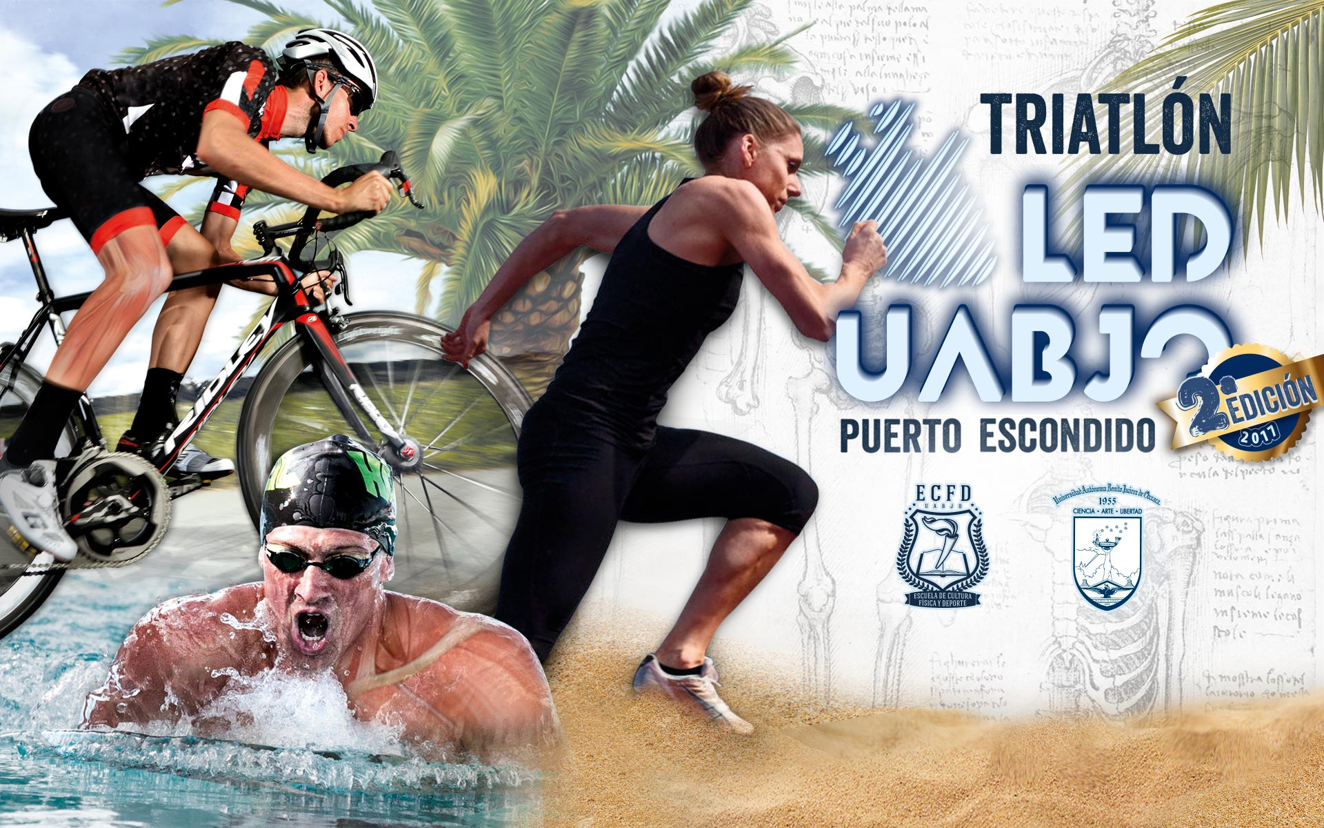 Triatlón LED 2017